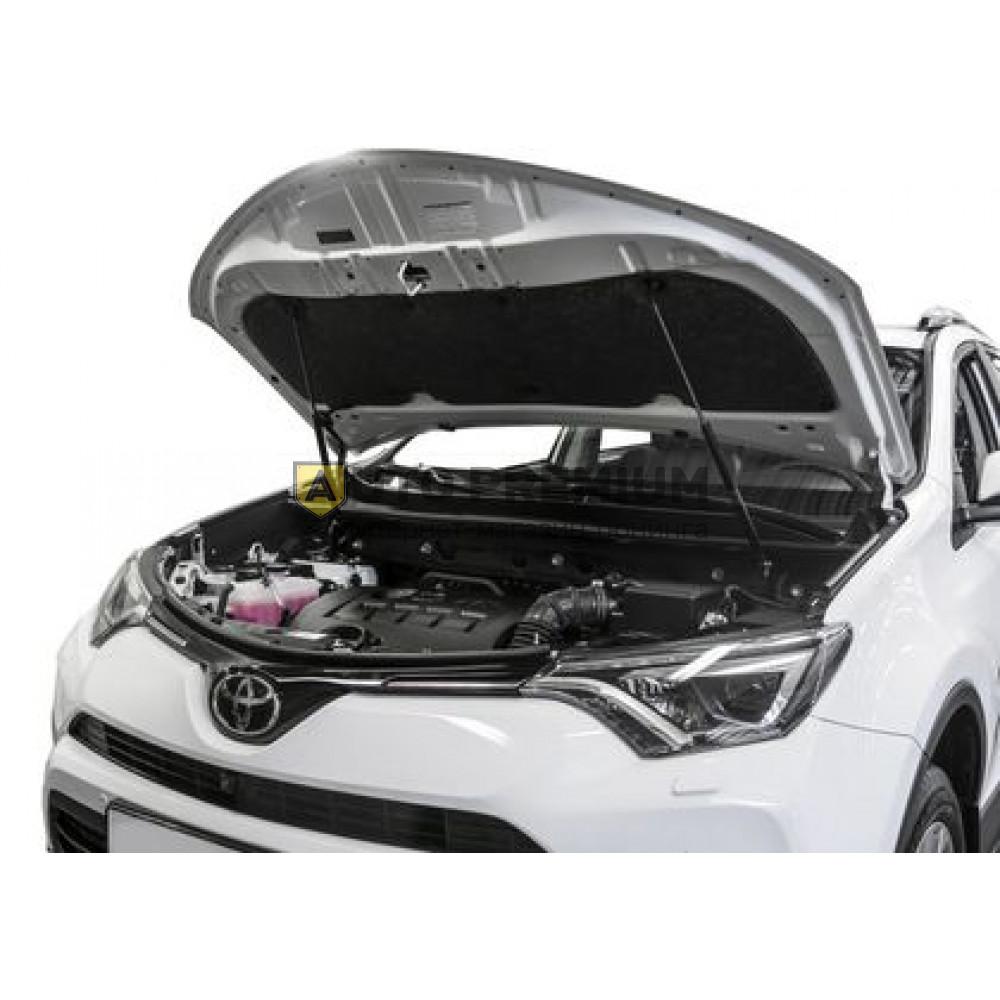 Амортизаторы (упоры) капота «Rival» для Toyota RAV4 IV 2012-2018